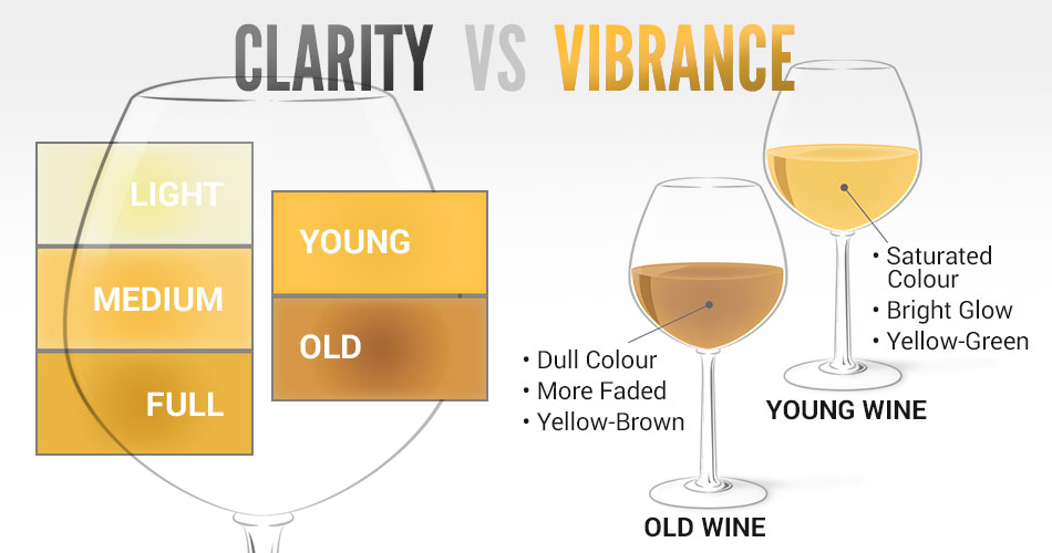Tasting Wine Clarity vs Vibrance