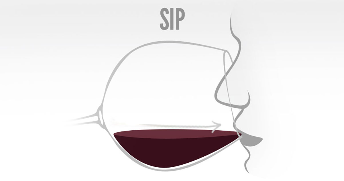 Wine Tasting How To Sip / Drink / Sample  | Just Wine