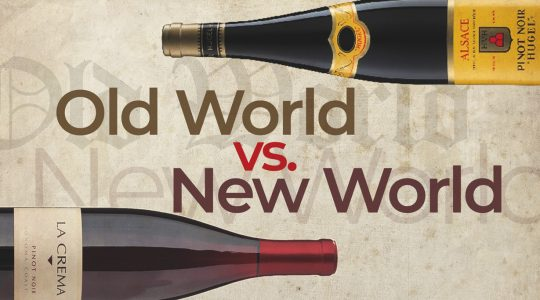 Old World vs New World Wines – What's the Difference? | Just Wine