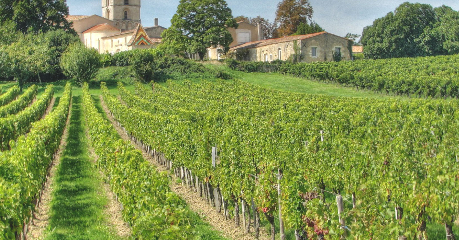 Basics of French Wine: Bordeaux for Beginners |