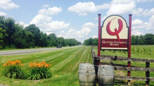 Kinship, Tradition Palpable at Virginia's Quattro Goomba's Winery | Just Wine