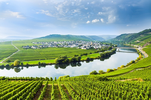 Image Source: www.germanwineusa.com  | Just Wine