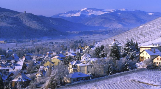 Alsace Wines in the Winter: White Grape Varieties for Colder Weather | Just Wine