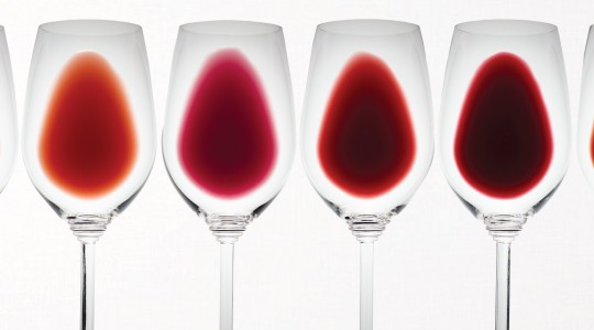 Shades of Red: What Does the Colour of Red Wine Tell Us? | Just Wine
