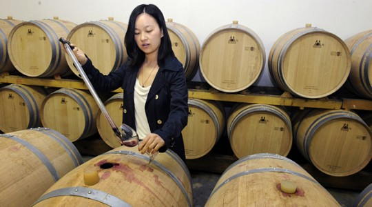 Wines of China: History, Grapes, Wineries & Winemaking Regions | Just Wine