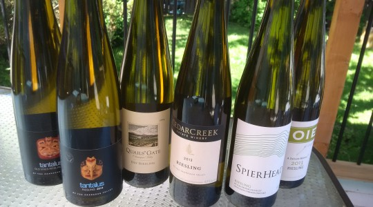 Drink More Riesling! The Best Canadian Riesling Wines to Enjoy | Just Wine