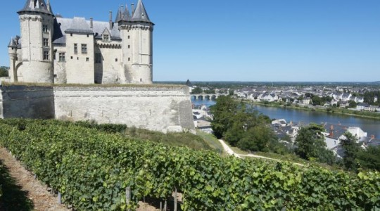 The Garden of France: Wines of the Loire Valley | Just Wine