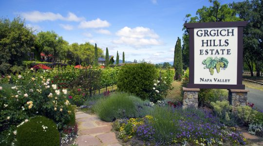 Grgich Hills Estate Winery Celebrates the 40th Anniversary of the Judgement of Paris | Just Wine