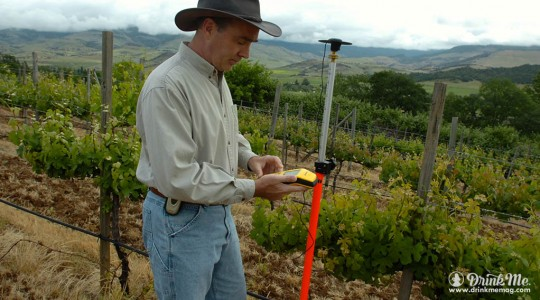 NASA Study: Climate Change Affects Wine Grape Harvests in France and Switzerland | Just Wine