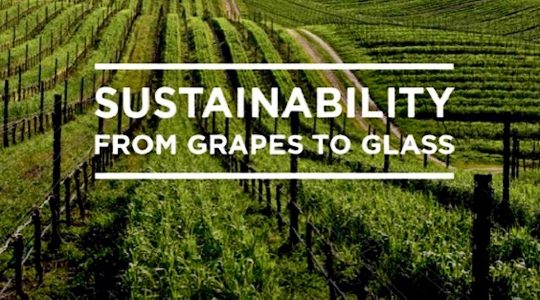 Celebrate California Sustainable Winegrowing During Down to Earth Month in April | Just Wine