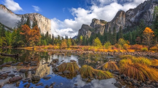 California Wine Country and National Parks Centennial: The Perfect Summer Travel Pairing | Just Wine