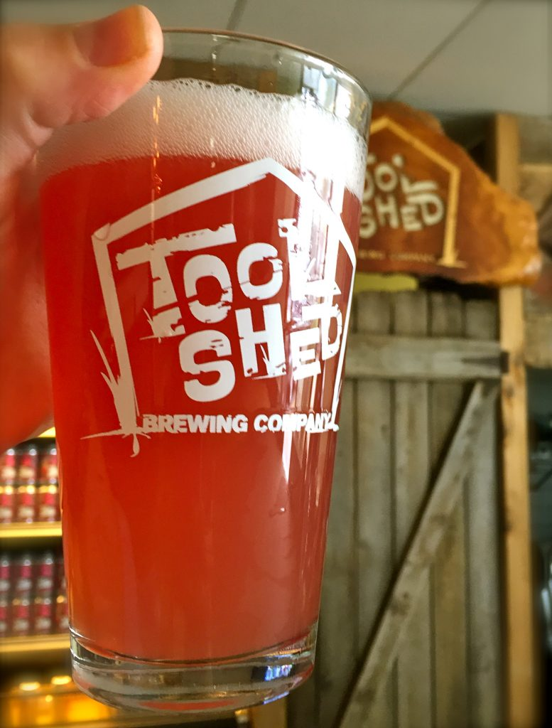Tool Shed Black Currant Gose