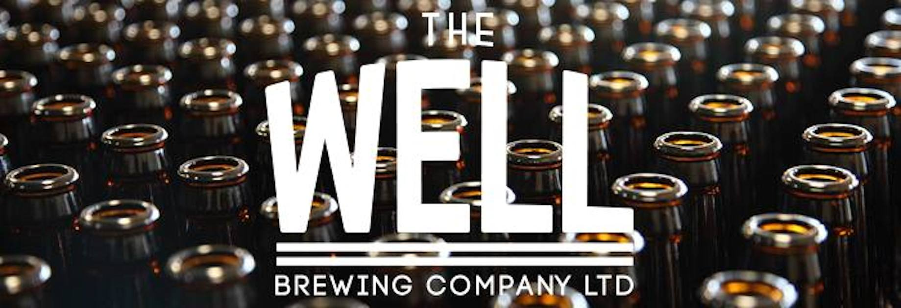 The Well Beer Image