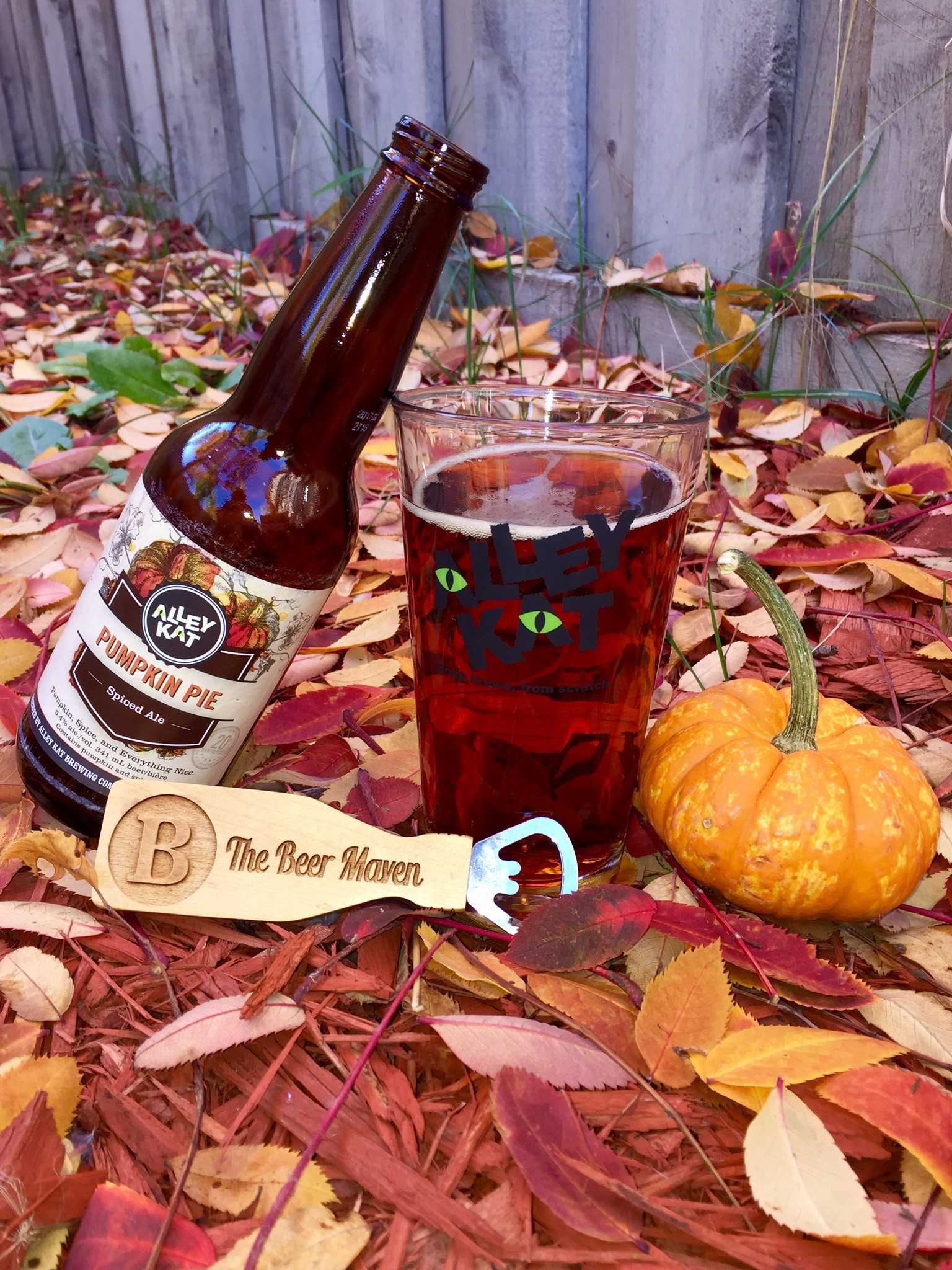alley-kat-pumpkin-pie-spiced-ale