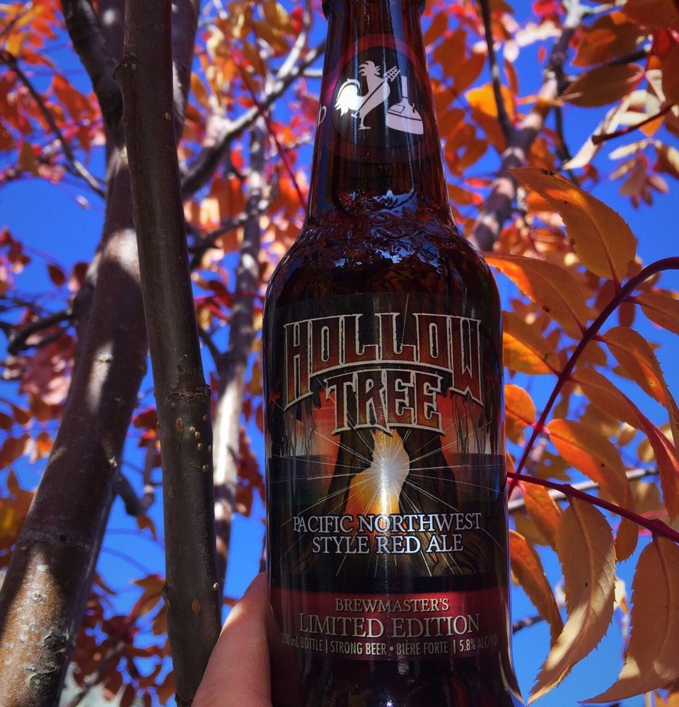 Fall-ing in Love With Beer