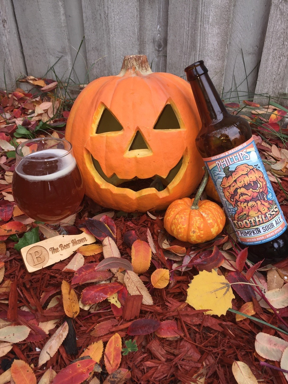 toothless-pumpkin-sour-ale