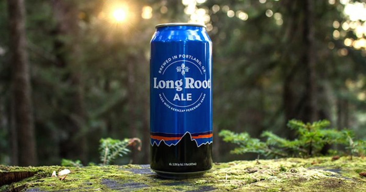 Can Long Root Ale by Hopworks Urban Brewery and Patagonia Provisions Save Our Environment?