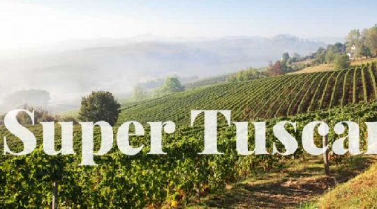 Wines of Italy: What's A Super Tuscan? Plus The Top 3 Super Tuscans To Try Now | Just Wine