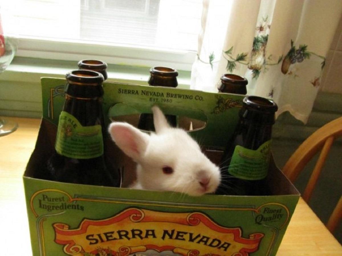 Hoppy Easter from JustBeer!