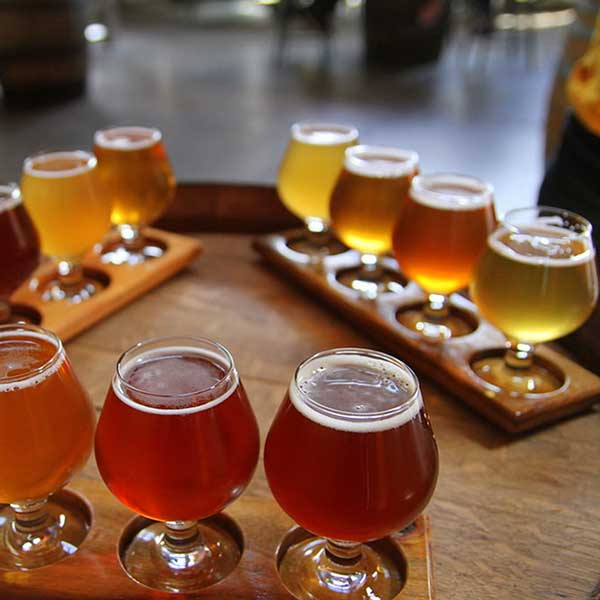 beer-flight-samples-stock-photo-free-image-social-media-instagram