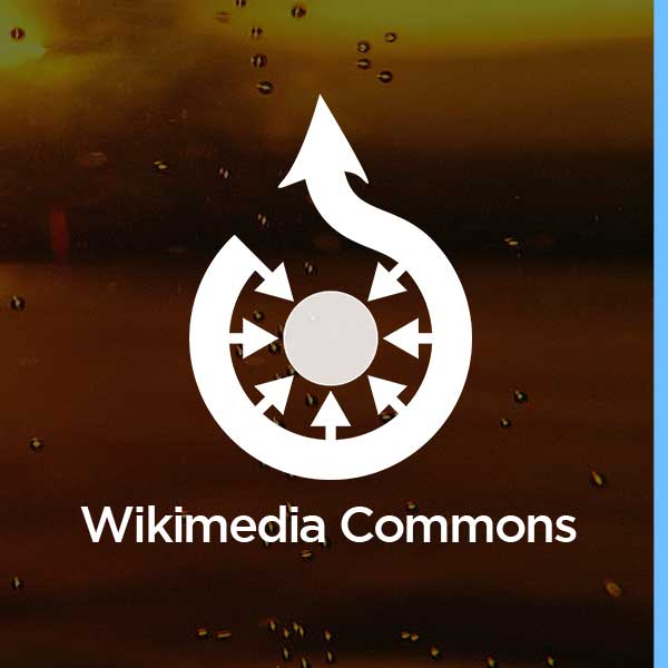 wikimedia-wikipedia-creative-commons-free-stock-photos-beer-images-brewing