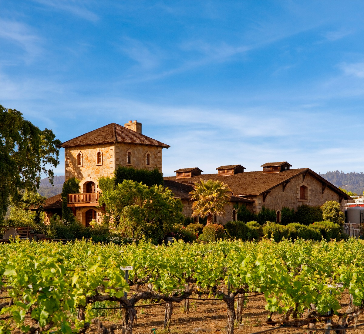 Image by: Napa Valley Tourism  | Just Wine