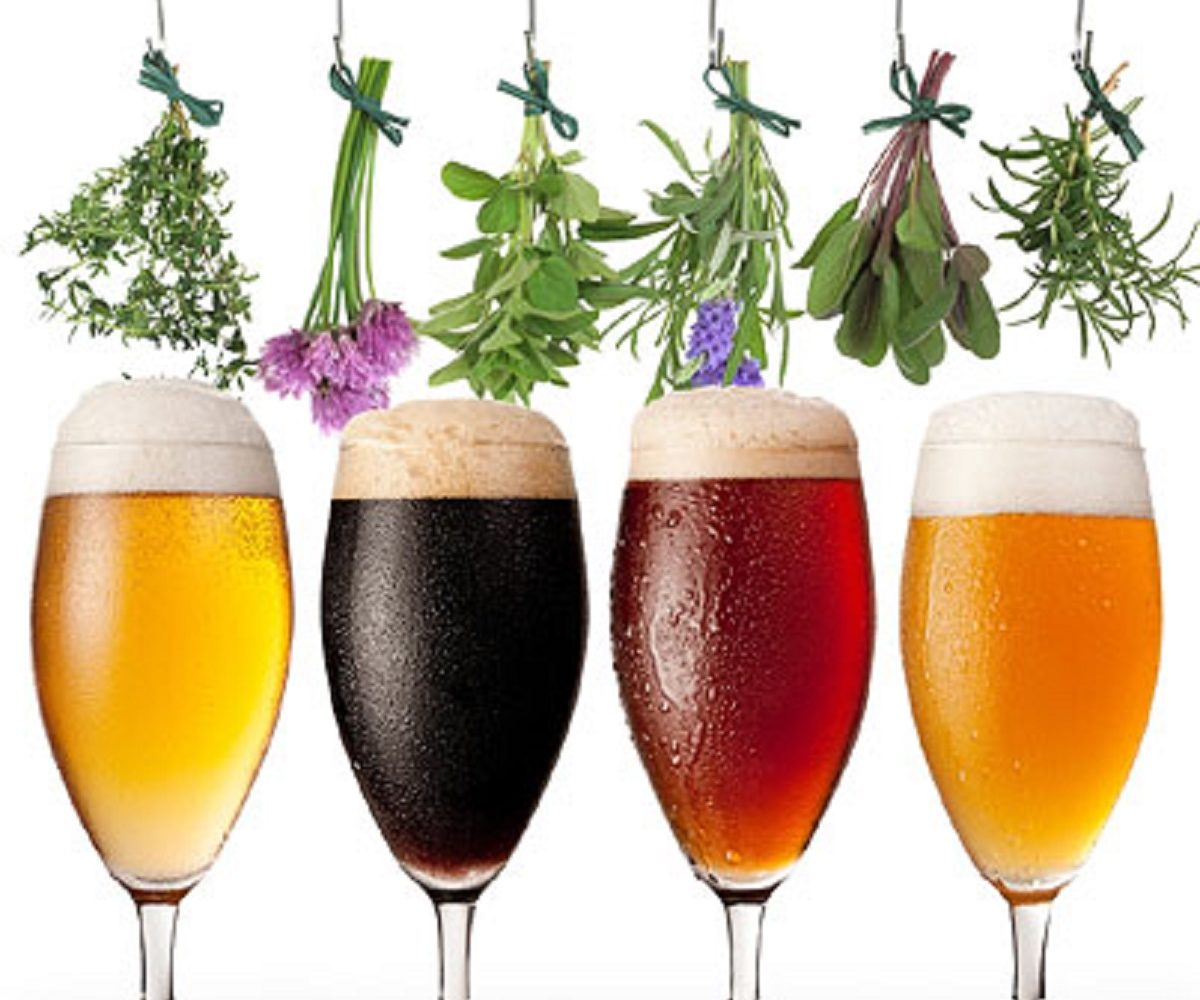 On Beer and Adjunct Ingredients