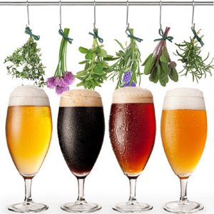 herbs_hanging_over_glasses_of_beer