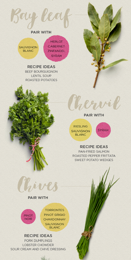 Herbs and their wine pairings