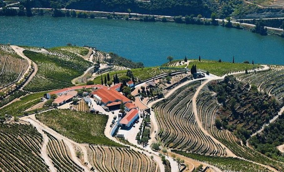 portugal-wine-producing-countries-old-world-new-world-wine-regions-just-wine