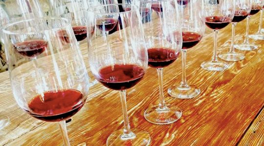 ABC Wine Tasting – A Collaborative Event with Artisan, Bonvida & Crush Wine Agencies | Just Wine