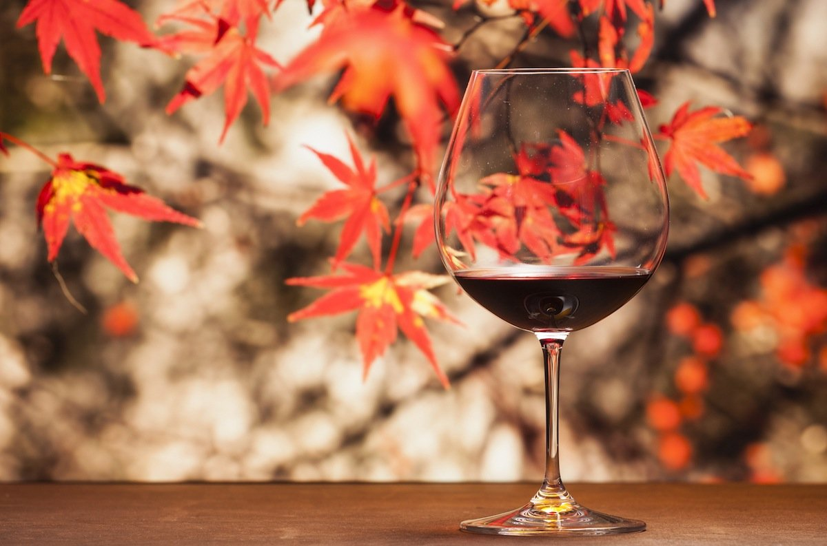 Image Source: iStock  | Just Wine