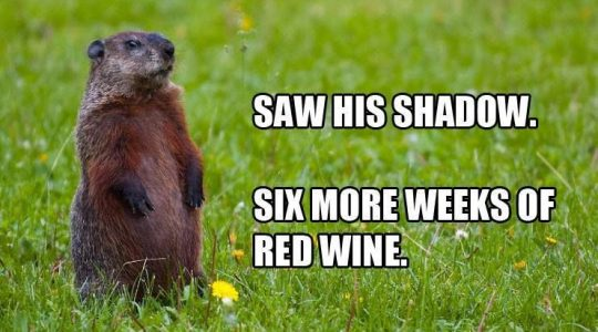 Groundhog Day Wine from the Groundhog Wine Trail in Pennsylvania, USA | Just Wine