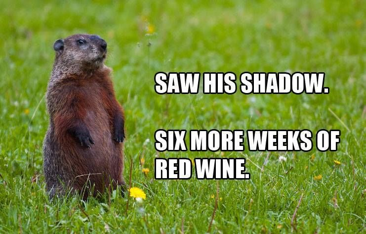 The Groundhog Wine Trail  | Just Wine