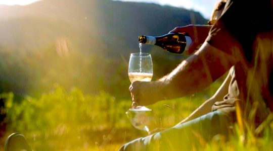 Get To Know These 7 Iconic Wineries in Australia | Just Wine