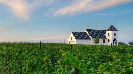 Hidden Wine Treasures of Canada: Prince Edward County Wine Region | Just Wine