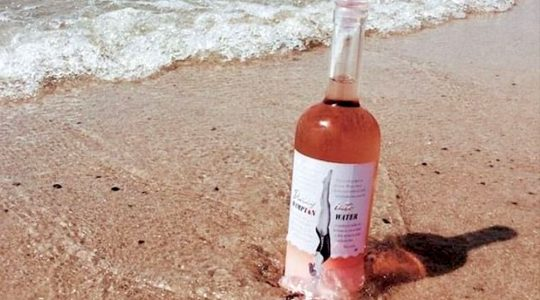 Father and Son Wine — Jon Bon Jovi Launches His New French Rosé | Just Wine