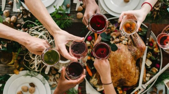 The Best Food & Wine Pairings for Traditional Thanksgiving Dinner | Just Wine