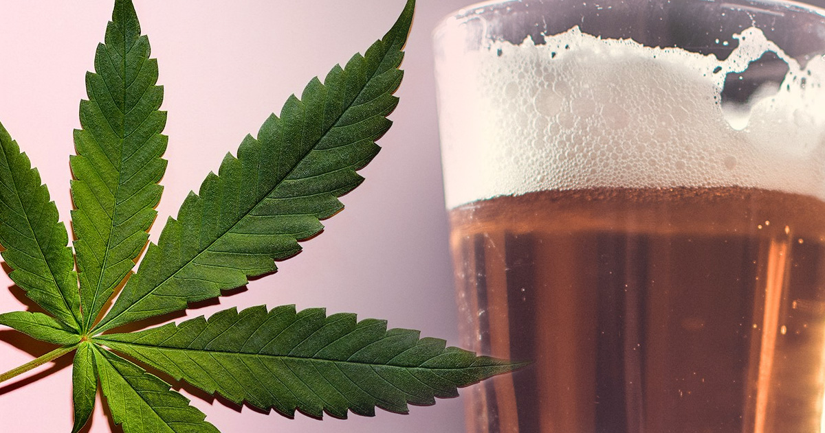 Is Canada Getting Its First Cannabis Beer?!