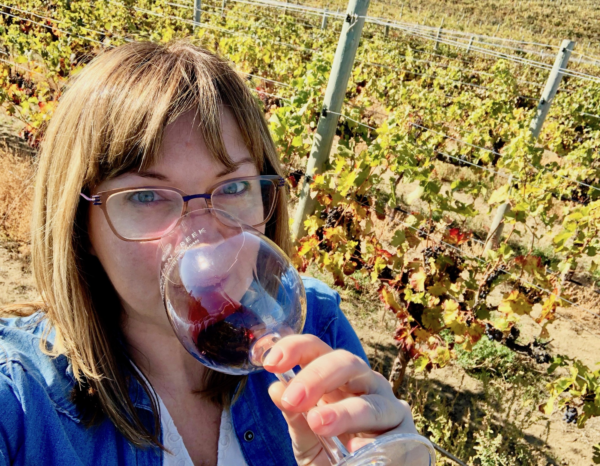 I did more than drink wine during harvest! Selfie Source: Tracy-Lynne MacLellan, JustWine  | Just Wine