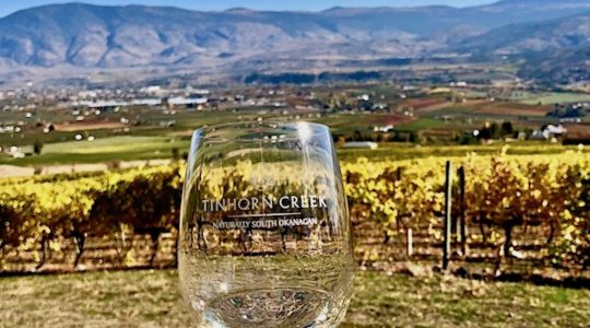 Tinhorn Creek Vineyards Wins 7 Wine Press Northwest Platinum Awards | Just Wine