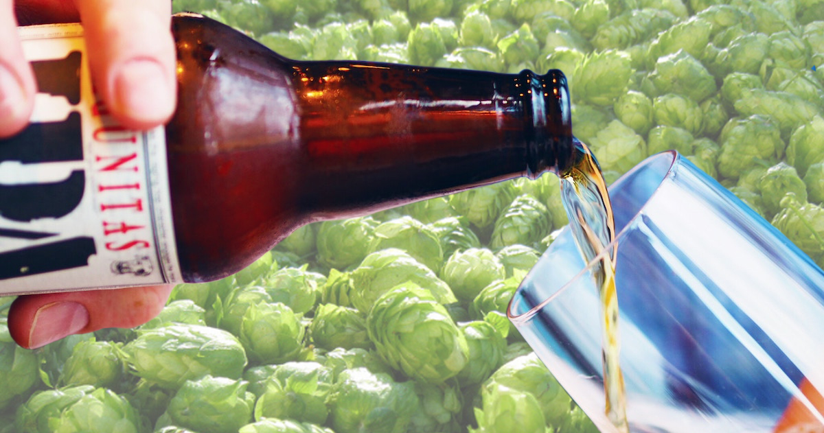 Hoppy vs. Bitter — What's the Difference?