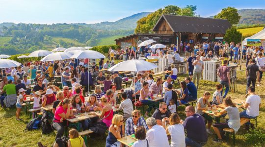 8 Canadian Wine Festivals to Attend Before Summer Is Over | Just Wine
